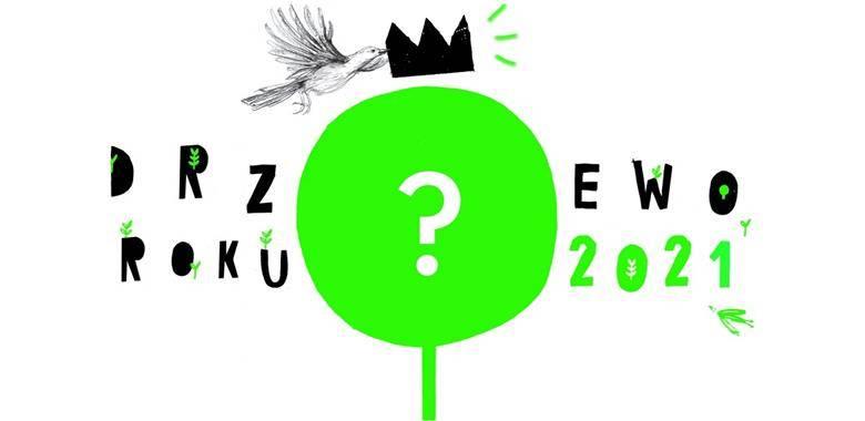 Konkurs Drzewo Roku 2021 – czekamy na zgłoszenia!